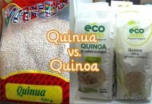 quinuavsquinoa
